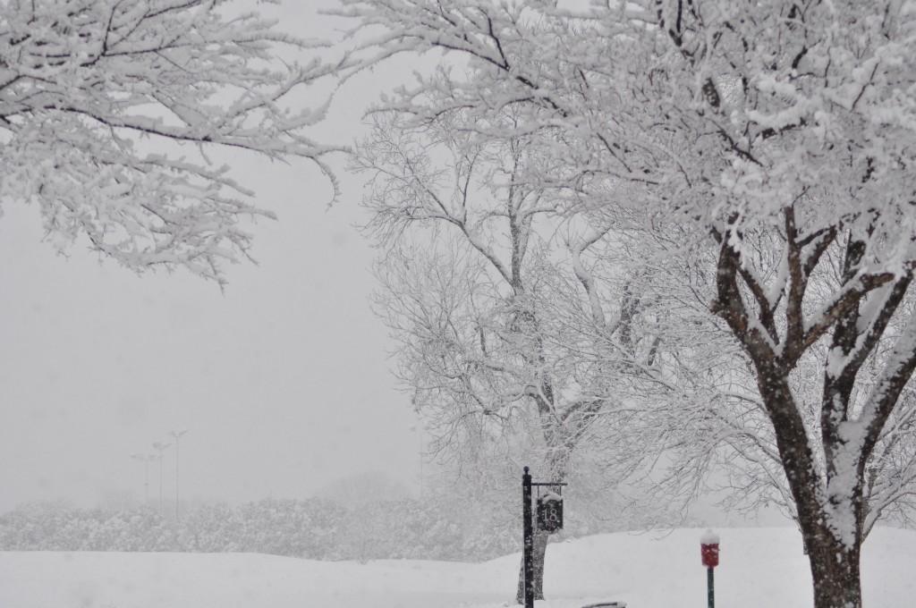 SnowStormGolf18